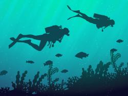 Cours de plongée 35